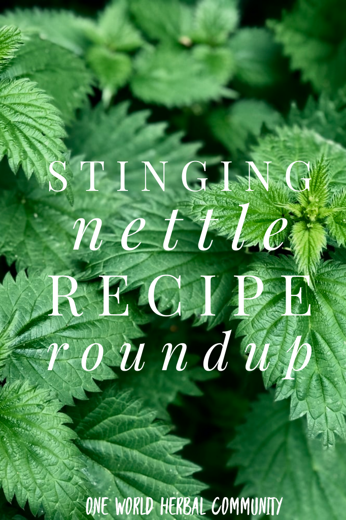 Nettle Recipe Roundup Pinterest