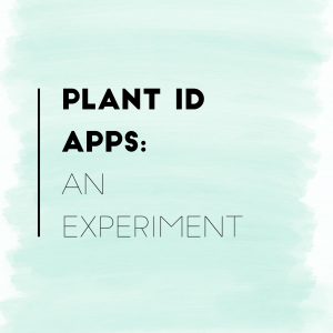 Plant ID Apps: An Experiment