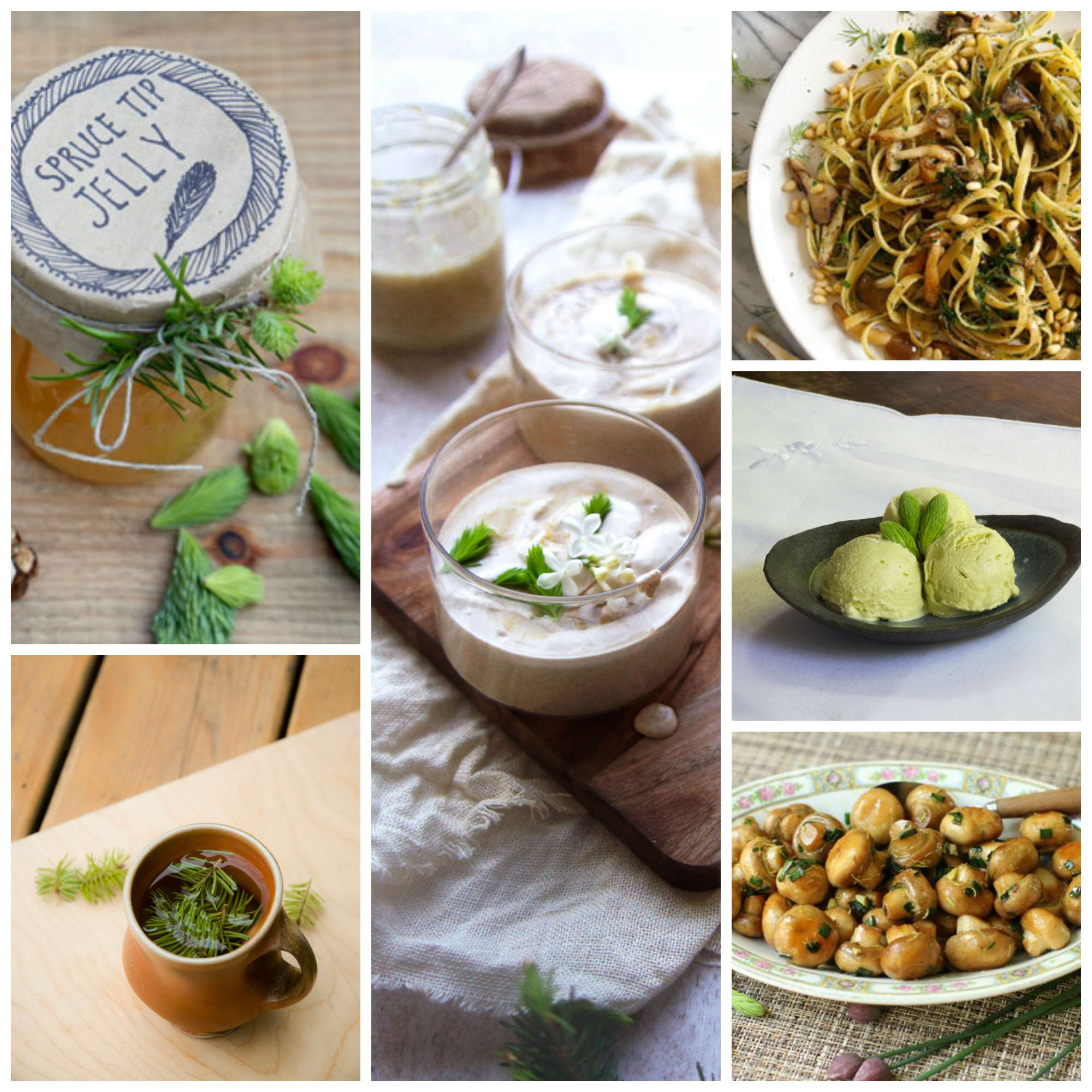 spruce tips recipe collage