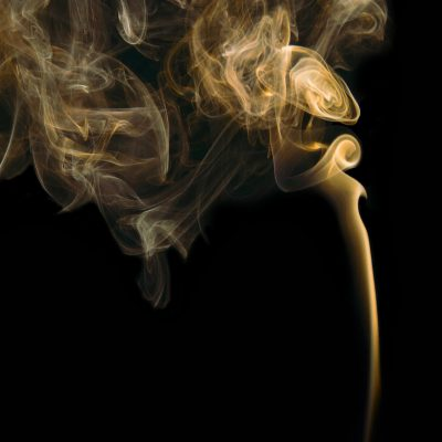 Top 6 Herbs to Grow for Incense Bundles